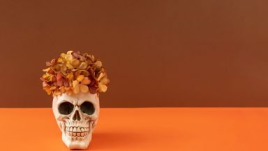 Pop culture ideas set to trend this Halloween